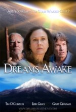 Dreams Awake (2011) afişi