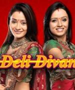 Deli Divane (2007) afişi