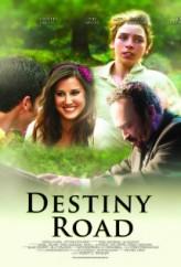 Destiny Road (2012) afişi