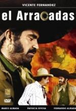 El Arracadas (1978) afişi