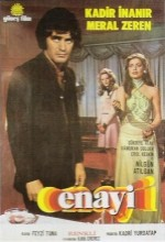Enayi (1974) afişi