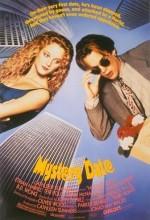 Esrarlı Buluşma (1991) afişi