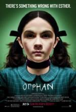 Evdeki Düşman (2009) afişi