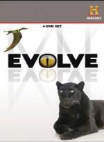 Evrim (2008) afişi