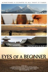Eyes of a Beginner (2012) afişi