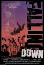 Falling Down 1 (2010) afişi