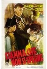 Fiamma Che Non Si Spegne (1949) afişi
