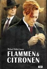 Ateş ve Limon (2008) afişi