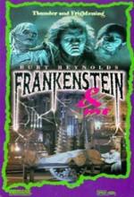 Frankenstein Ve Ben (1996) afişi