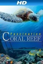 Fascination Coral Reef (2013) afişi