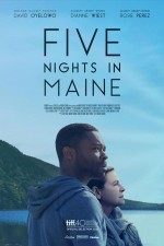 Five Nights in Maine (2015) afişi