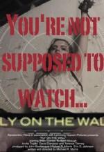 Fly on the Wall (2017) afişi