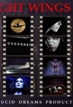Gecenin Kanatları (ı) (2010) afişi