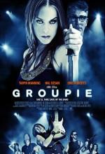 Groupie (2010) afişi