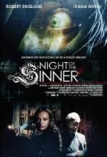 Günahkarın Gecesi (2009) afişi