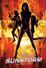 Güneş Fırtınası (2001) afişi