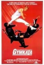 Gymkata (1985) afişi
