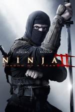 Ninja 2: Gözyaşının Gölgesi (2013) afişi