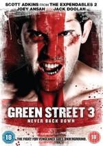 Yeşil Sokak Holiganları 3: Asla Pes Etme (2013) afişi