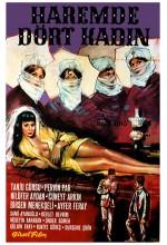 Haremde Dört Kadın (1965) afişi