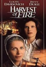 Harvest Of Fire (1996) afişi