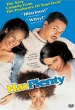 Hav Plenty (1997) afişi