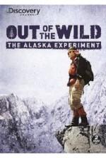 Hayatta Kal Alaska (2012) afişi