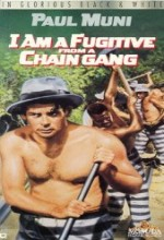 I Am A Fugitive From A Chain Gang (1932) afişi
