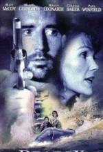 Im Sog Des Bösen (1995) afişi