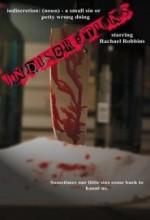 Indiscretions (2009) afişi