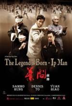 Ip Man Efsane Doğuyor (2010) afişi