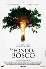 In Fondo Al Bosco (2015) afişi