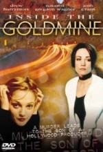ınside The Goldmine (1994) afişi