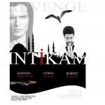 Intikam (2015) afişi