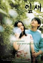 Ipsae (2001) afişi