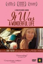 It Was a Wonderful Life (1993) afişi