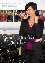İyi Cadının Merakı (2014) afişi
