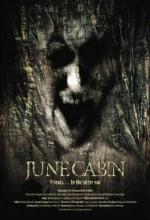 June Cabin (2007) afişi