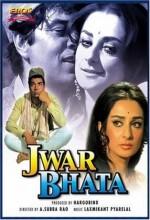 Jwar Bhata