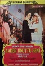 Kader Unuttu Beni (1971) afişi