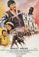Kadı Han (1976) afişi