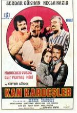 Kan Kardeşler (1976) afişi