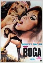 Kara Boğa (1974) afişi