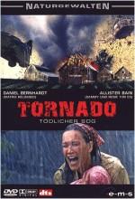 Kasırga (ııı) (2004) afişi