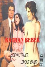 Katran Bebek (1973) afişi