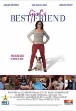 Kızların En İyi Dostu (2008) afişi