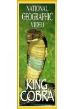 Kral Kobra (1997) afişi