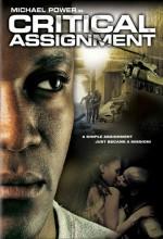 Kritik Görev (2004) afişi