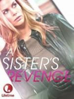Kız Kardeşimin İntikamı (2013) afişi