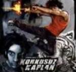 Korkusuz Kaplan (2005) afişi
